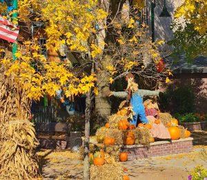 Fall Centennial Park